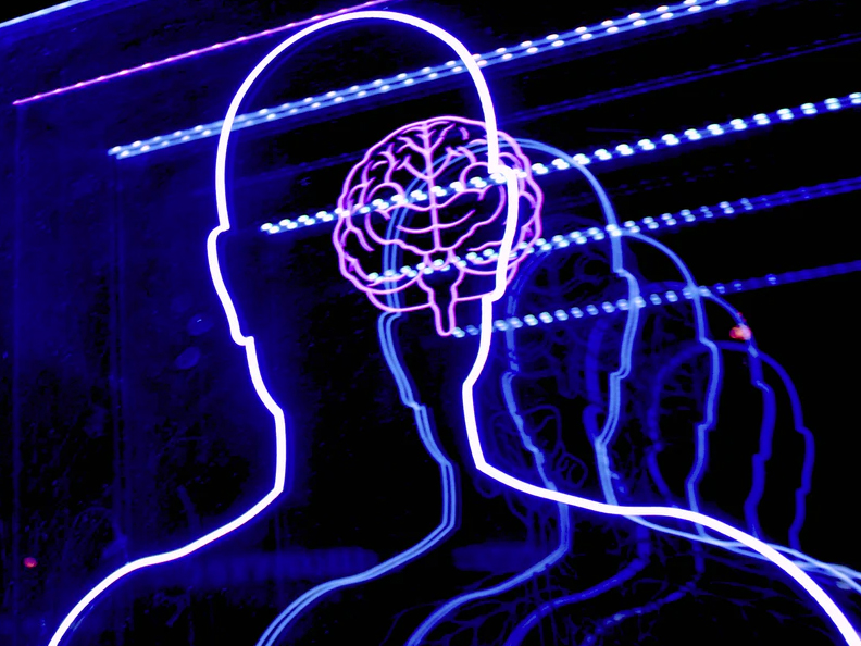 neon display of human body and brain