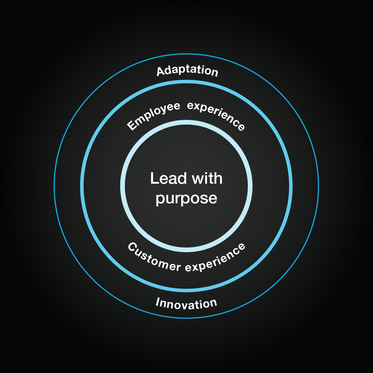 A graphic of lead with purpose adaptive framework produced. 3 concentric circles with text in between.